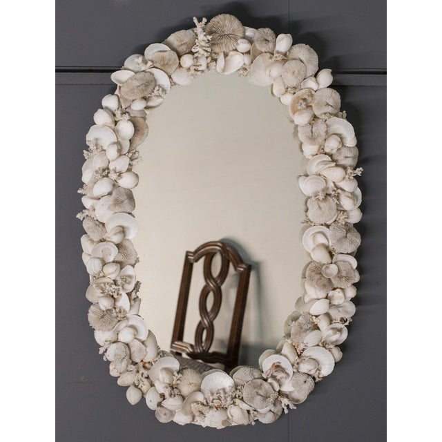 This vintage French oval mirror circa 1950 showcases a variety of sea shells and coral all chosen for their pale colour....