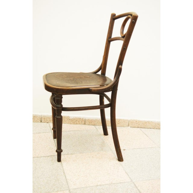 Brown Austrian bentwood chair For Sale - Image 8 of 11