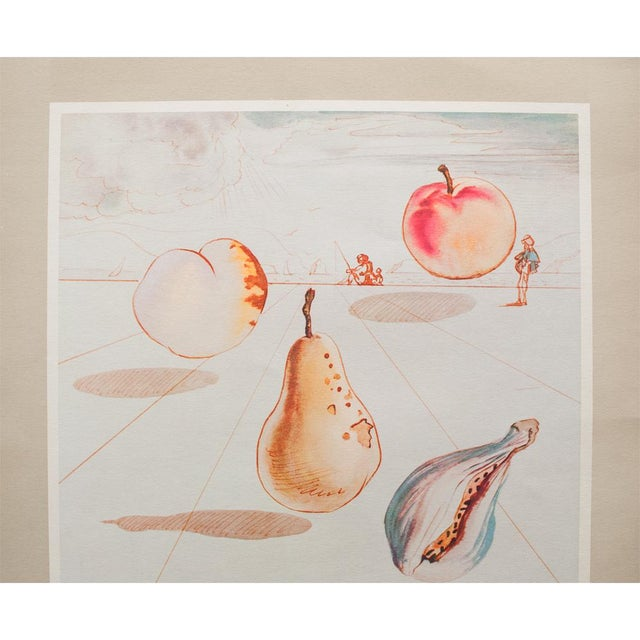 Contemporary 1955 Dali Fruits Original Period Lithograph From the Mrs. Albert D. Lasker Collection For Sale - Image 3 of 13