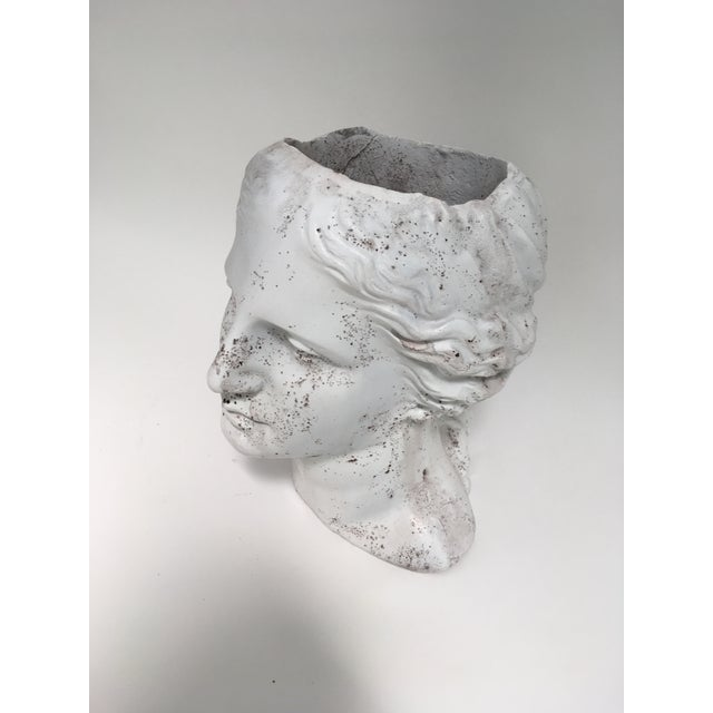 Plastic Weathered Venus Bust Head Planter For Sale - Image 7 of 8