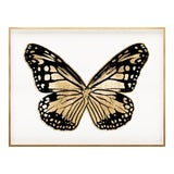 Image of Butterfly Royale, Black 3 Framed Artwork For Sale