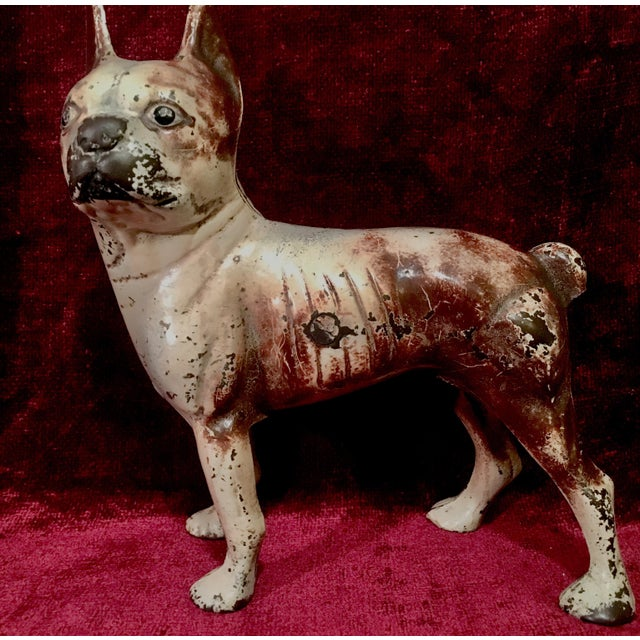 1930s Hubley Boston Terrier Dog Cast Iron Doorstops - a Pair For Sale In Nashville - Image 6 of 13