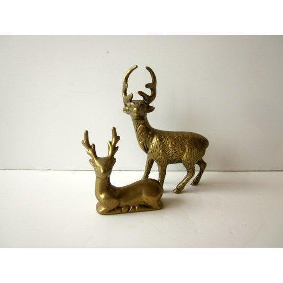 Hollywood Regency Brass Reindeer - Pair Deer - Image 3 of 6