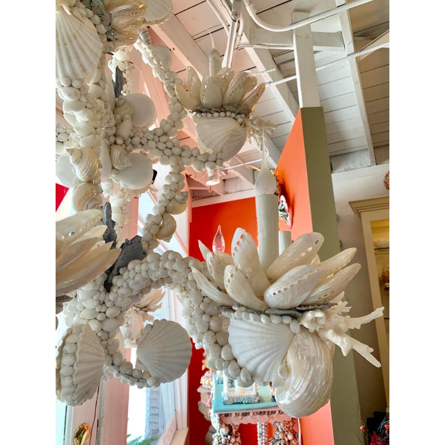 2010s Large 8-Light Shell Chandelier For Sale - Image 5 of 9
