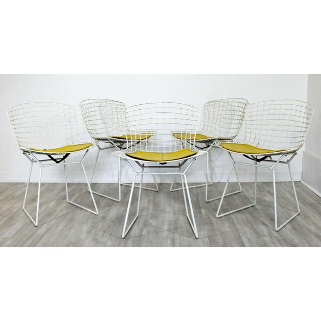 Contemporary Contemporary Modern Harry Bertoia for Knoll Set 5 Side Dining Chairs 1980 Yellow For Sale - Image 3 of 11