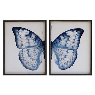 "Split Blue and White Butterfly - 38"" X 25"" For Sale"
