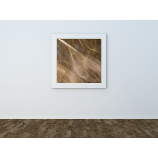 "Gillian Lindsay ""Sheer Joy"" Framed Photo Print - Image 3 of 3"