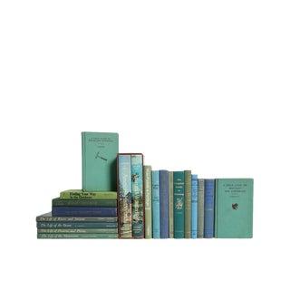 Outdoor Adventures : Set of Twenty Decorative Books