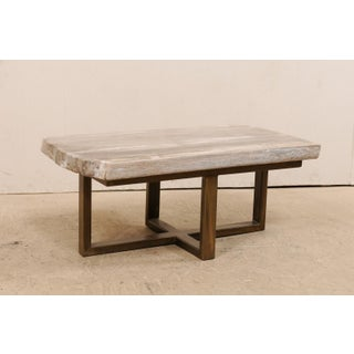 Petrified Wood Top Coffee Table With Modern-Style Metal Base Preview