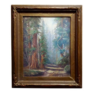 Frank Harvey Cutting -Beautiful Redwood Forest-California Oil Painting C1953s For Sale