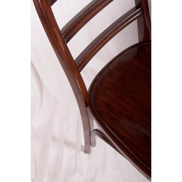 Thonet Art Deco beechwood chair by Thonet, 1919 For Sale - Image 4 of 9