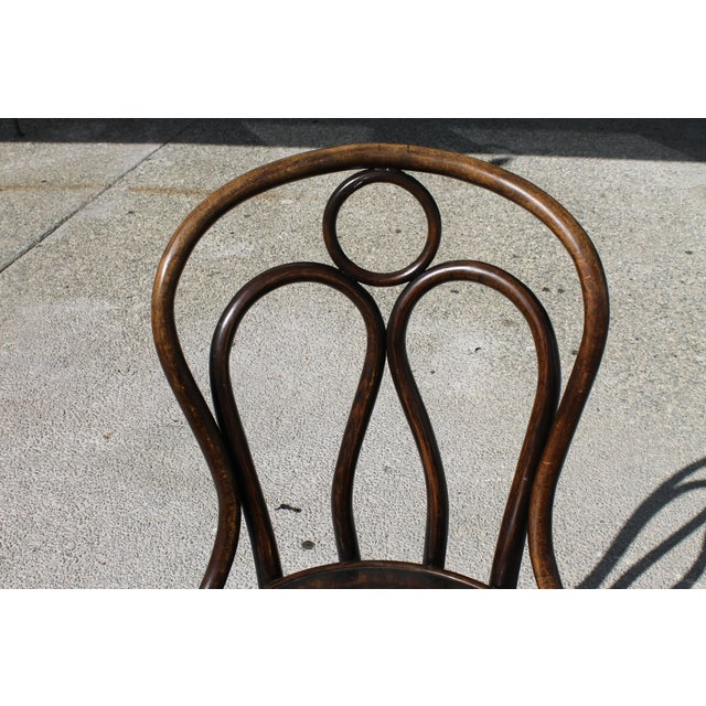 Brown Mundus and J J Kohn Ltd Bentwood Chairs - Set of 6 For Sale - Image 8 of 12