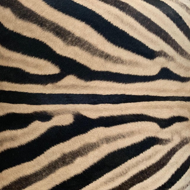Billy Baldwin Style X Benches Restored in Zebra Hide - a Pair For Sale In Saint Louis - Image 6 of 10