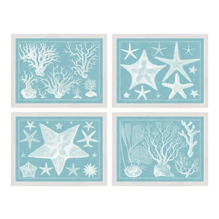 Blue Sealife in White Frame - Set of 4 For Sale