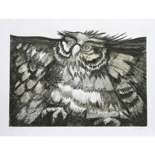 """Victor Delfin, """"Old Owl,"""" Etching - Image 1 of 2"""