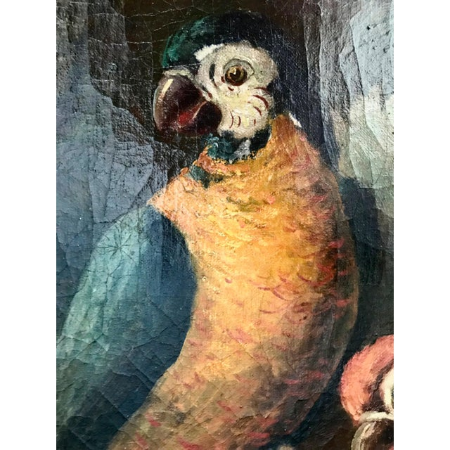 Blue Jacob Bogdani Follower, Still Life With Parrots Oil on Canvas For Sale - Image 8 of 13