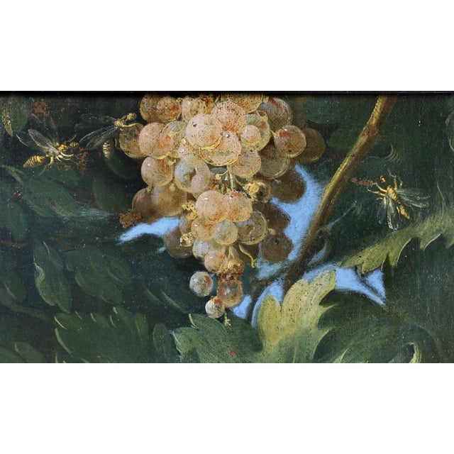Neoclassical Large Flemish Oil on Canvas of Peacocks and Fruit in Landscape For Sale - Image 3 of 11