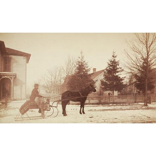 Horse & Sleigh Antique Photograph For Sale