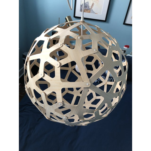 Modern David Trubridge Coral Pendant Light For Sale - Image 3 of 5