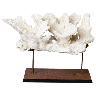 Large Vintage White Coral Specimen on Custom Made Iron Stand II For Sale