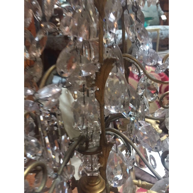 Early 19th Century French Dore Bronze & Crystal Girandoles - a Pair For Sale - Image 9 of 12