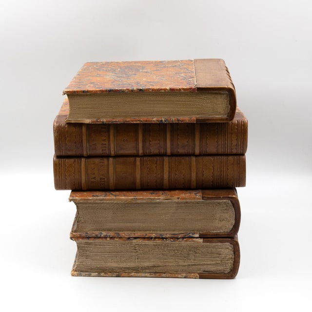 Late Victorian Book Stack Concealed Wine Cooler, English Circa 1880 For Sale In San Francisco - Image 6 of 9