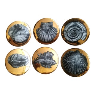1950s Vintage Piero Fornasetti Conchyliorum Pattern Porcelain Gilt Rare Seashell Plates - Set of 6