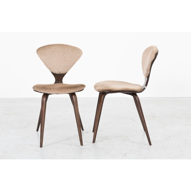 Mid-Century Modern Set of 6 Norman Cherner for Plycraft Dining Chairs For Sale - Image 3 of 11