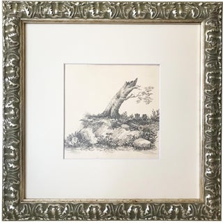 19th Century French Graphite Landscape Drawing of a Tree For Sale