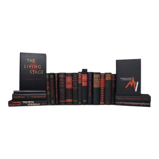 Vintage Onyx With Scarlet Accent Book Set - Set of 20 For Sale