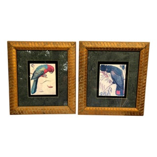1970s Vintage Gold Framed Parrot Wall Prints - A Pair For Sale