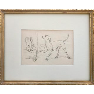 19th Century Antique Graphite Drawing of Circus Dogs For Sale