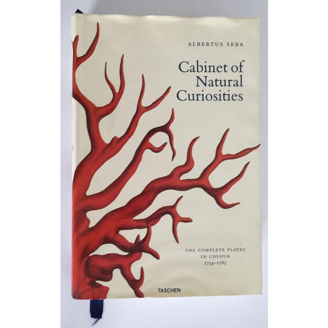 Moving Sale - Cabinet of Curiosities Book by Albertus Seba - Image 2 of 11