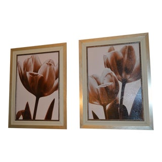 Gold Framed Gesso Floral Pictures - A Pair For Sale