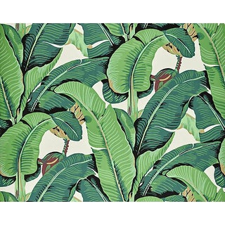Hinson for the House of Scalamandre Hinson Palm Wallpaper in Green For Sale