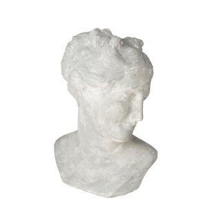 Pompeii Venus Bust, Gray For Sale