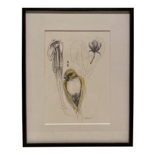 """""""Yellow Bird"""" Contemporary Bird Graphite Drawing, Framed For Sale"""