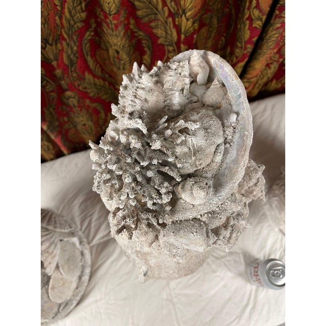 "Off-white 1990s ""Sea Queen"" Woman Bust Sea Shell Sculpture For Sale - Image 8 of 11"