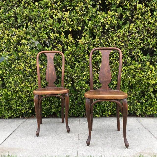 J & J Kohn Austrian Bistro Chairs - A Pair - Image 2 of 7
