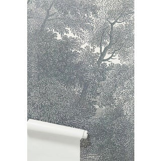 Greyscale Forest Wallpaper Mural Preview