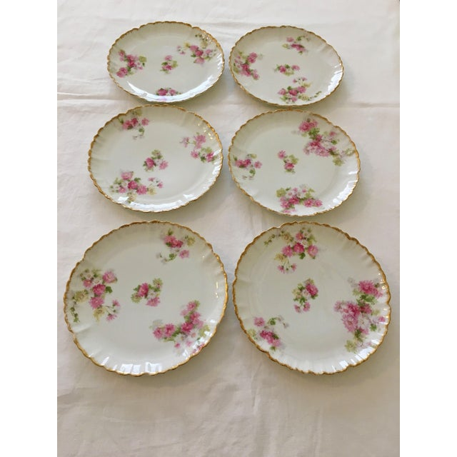 French Limoges Haviland Dessert Plates - Set of 6 For Sale In West Palm - Image 6 of 11