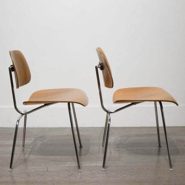 Mid 20th Century Early Ray and Charles Eames for Herman Miller Dcm Chairs, Circa 1950- Price Is Per Chair For Sale - Image 5 of 13
