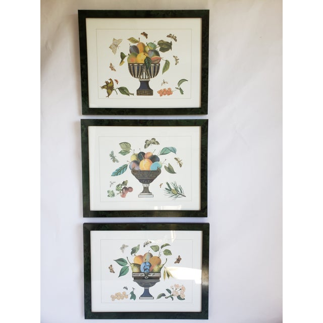 Set of 3 customized framed butterfly botanical prints with a beautiful colors combination. The prints have a Neoclassical...