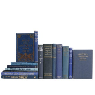 The Antique Collector in Blue : Set of Fifteen Decorative Books