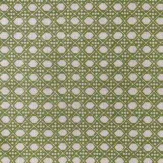 LuRu Home Wickerwork Fabric, Sample in Lime Sample For Sale