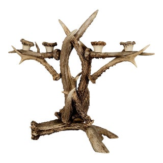 1900 Cabin Antler Candle Holder For Sale