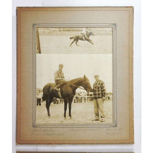 Shabby Chic 1950's Horse Race Photographs - Set of 4 For Sale - Image 3 of 6