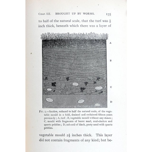 Darwin's Formation of Vegetable Mould Book - Image 3 of 3