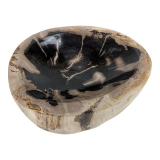Petrified Wood Catchall Dish or Bowl For Sale