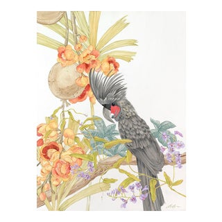 Allison Cosmos Adventures of the Palm Cockatoo Painting For Sale